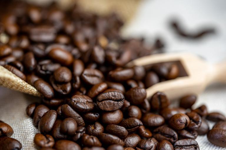 Read more about the article מידע על פולי קפה: עובדות מעניינות על קפה – חלק 2