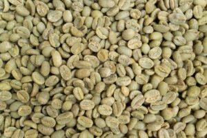 רכישת פולי קפה ירוקים – סוגי עסקאות ותמחורים